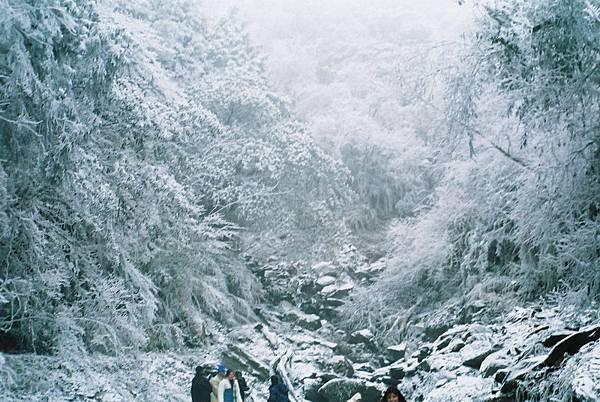 太平山~雪 (1)