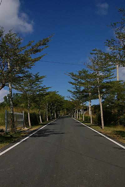 台東197縣道 (4).JPG