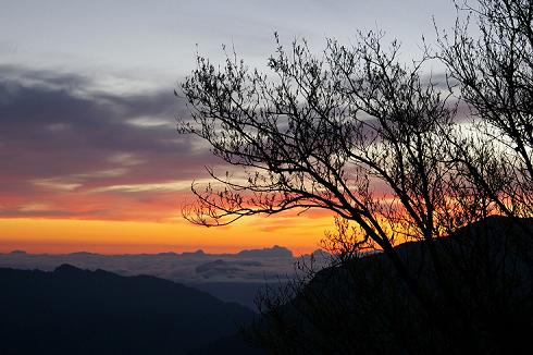 奇萊登山口 (2).JPG