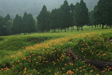 赤科山 (20).jpg