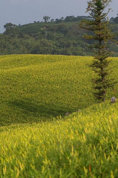 赤科山 (24).jpg