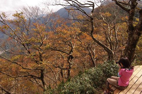 翠峰湖山毛櫸步道 (61).JPG
