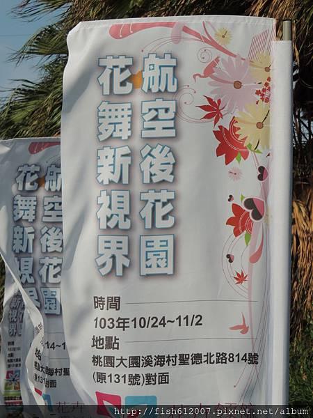 {fishraymonf}20141028 花卉領航 農業起飛3