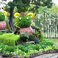 2009士林官邸菊展