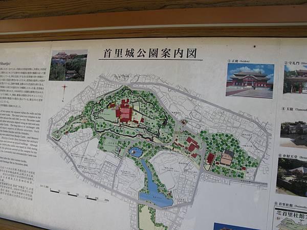 okinawa 431