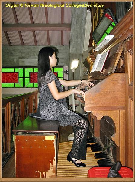 台神Organ
