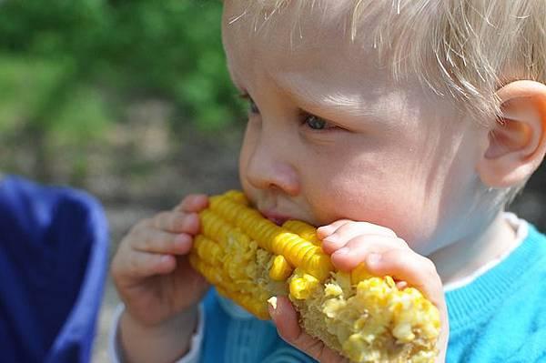 嬰兒副食品食譜