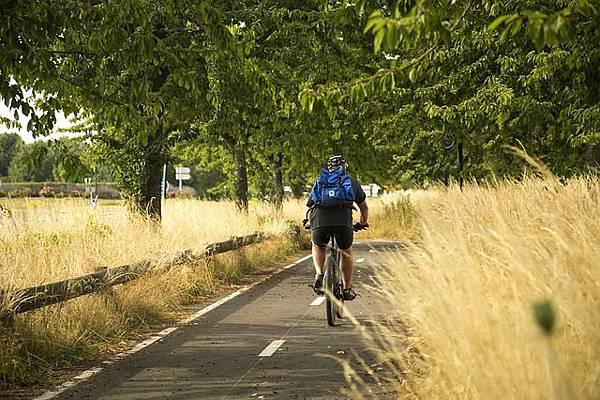 中部自行車道路線
