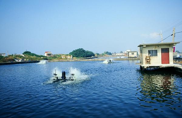 養蝦的風景.JPG