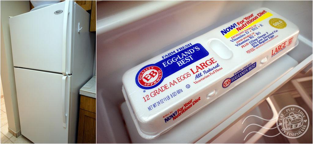 ASTON 冰箱 蛋