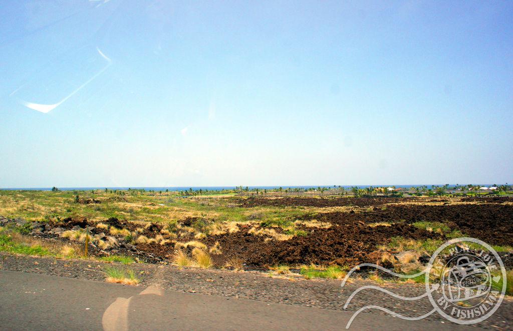 夏威夷 公路