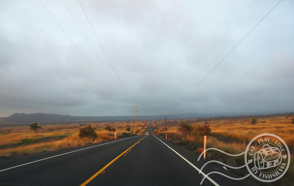 大島 公路