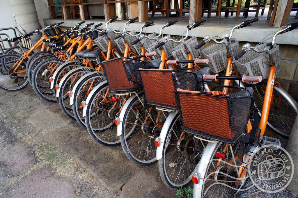 福灣 腳踏車