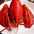 how-to-steam-lobster-1.jpg
