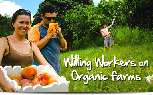 wwoof-memberships.jpg