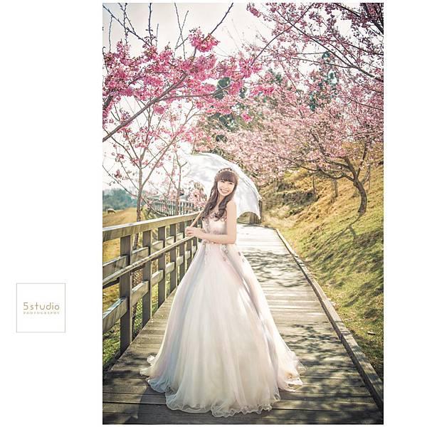 5studio韓風婚紗攝影工作室青青草原01