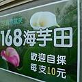 P1080896 [800x600].JPG