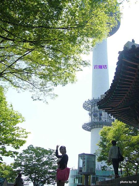 韓國首爾Day5-11.jpg