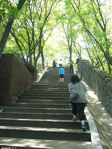 韓國首爾Day5-8.jpg