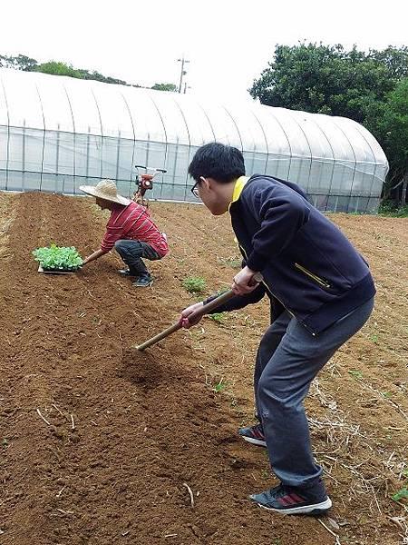 (圖十三)挖土溝.jpg