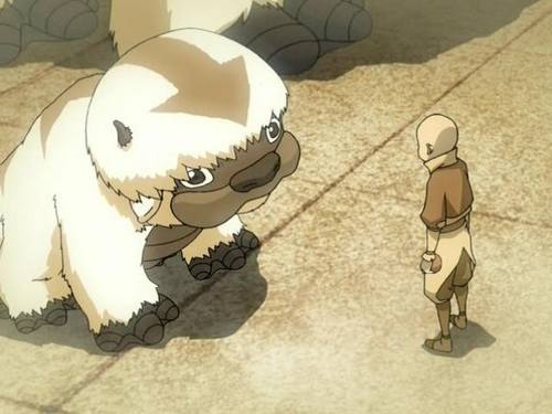 Aang-with-his-giant-flying-Bison-Appa-Photo.jpg