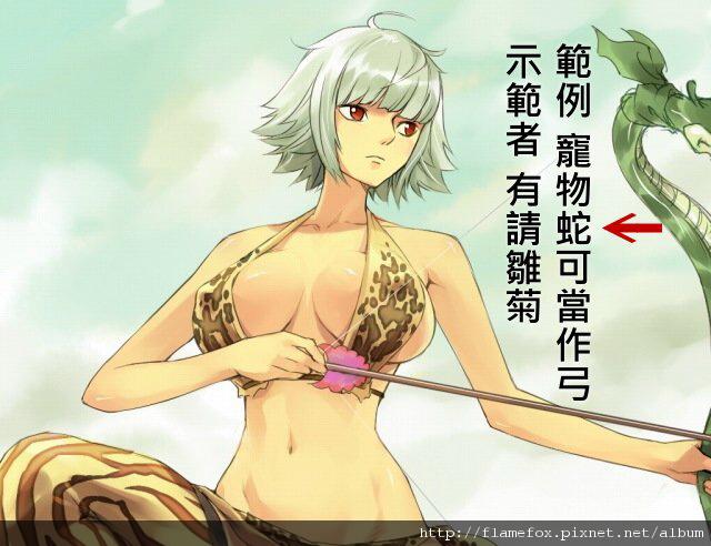 雛菊.jpg
