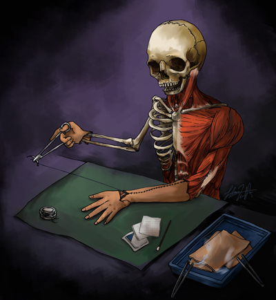 解剖.jpg