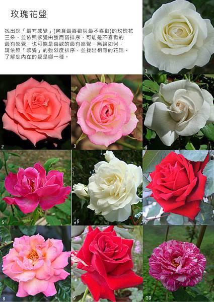 七夕玫瑰花盤j