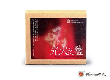 201309網路+logo-光火之鹽