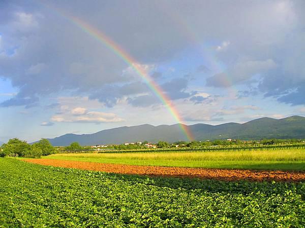rainbow-1494772