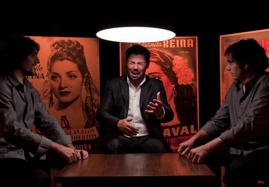 Miguel Poveda - Flamenco.jpg