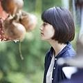 little_forest_Autumn_016.jpg