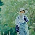little_forest_summer_006.jpg