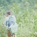 little_forest_summer_008.jpg