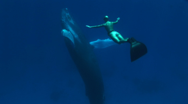 Mandy and humpback 2.jpg