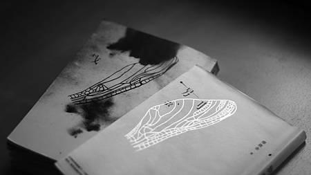 01透明珍珠箔燙金的蟲翅浮游於書衣,和書封上另一只水彩黑影蟲翅兩相拍動倒映.JPG