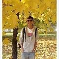 莫斯科的秋天很適合散步旅行