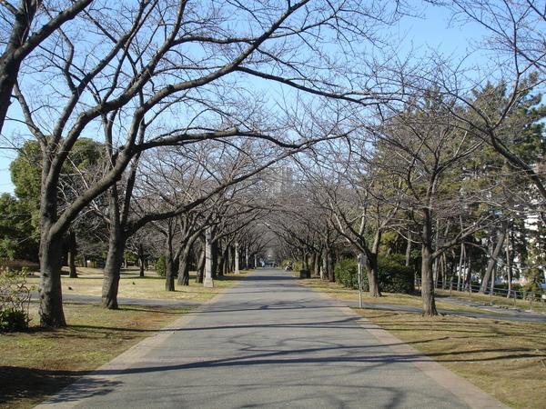 森綠道公園