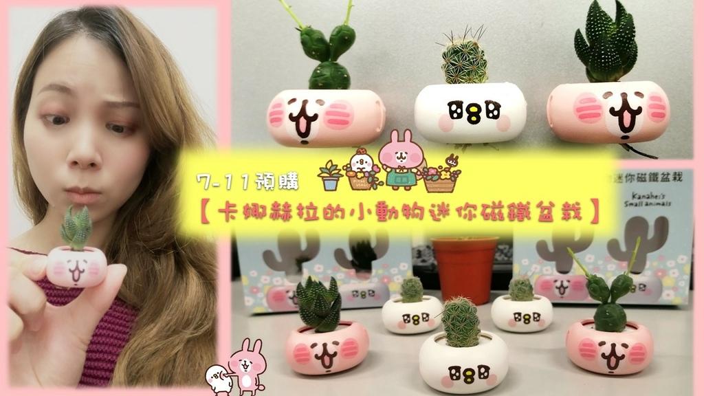 卡娜赫拉的小動物迷你磁鐵盆栽 封面.jpg