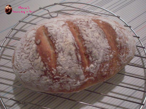 ♨ 免揉麵包 2009/04/26