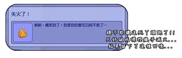 002 (46).jpg