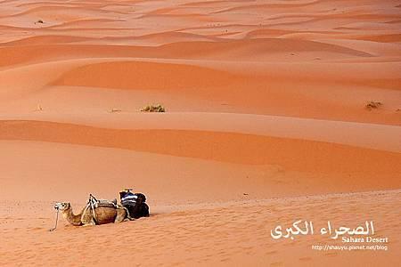 Moroccan school.jpg