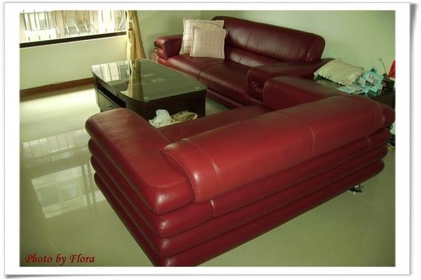 Lio最愛的沙發