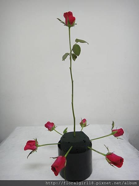 千朵花分解01.JPG