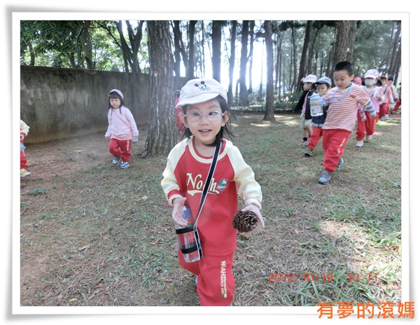 孩子在松樹下興高采烈的撿拾松果 (2)