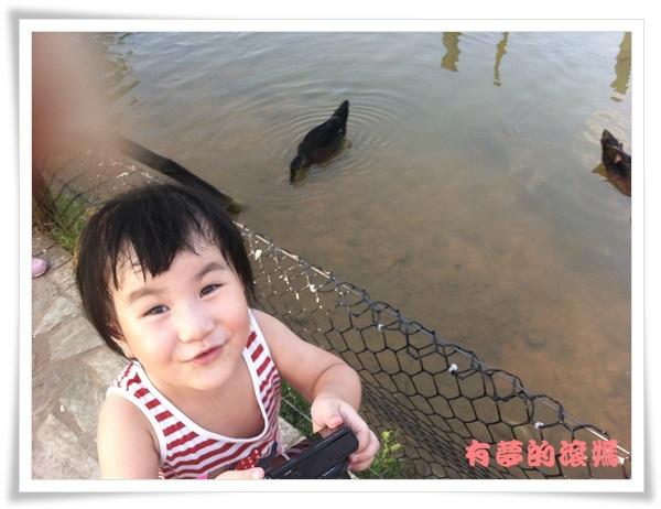 20130809 iphone 101.JPG