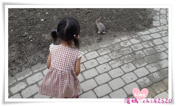 20140710_135818.jpg