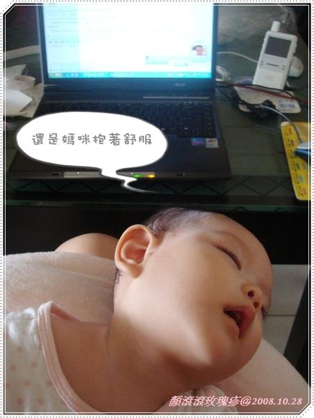 20081031-玫瑰疹2.jpg