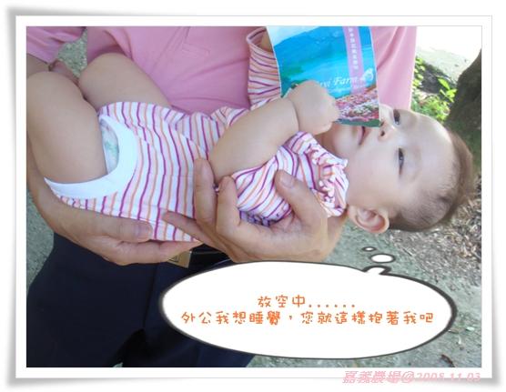 20081103-嘉義農場顏滾滾放空中.jpg