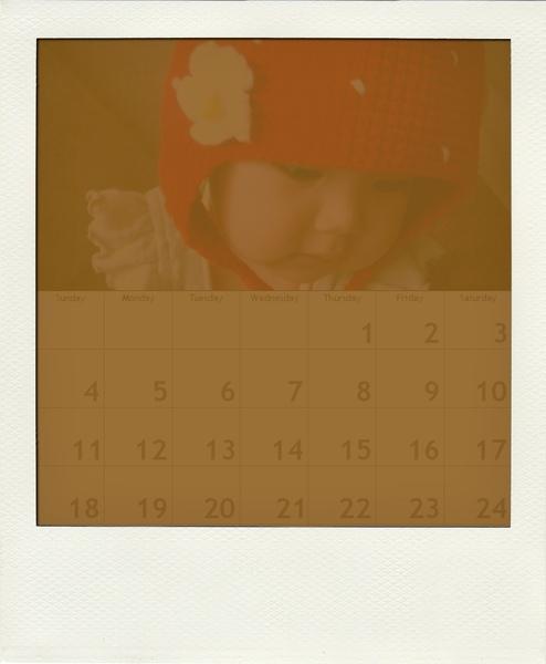 calendar200902-pola01.jpg
